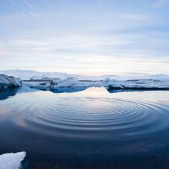 Iceberg - pic Jeremy Goldberg