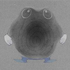 Poliwhirl under the microscope