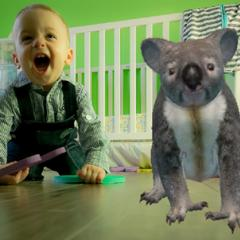 Baby and AR Koala - AR Animals