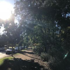 John-Oxley-River-Walk-path-winds-along-the-Brisbane-River